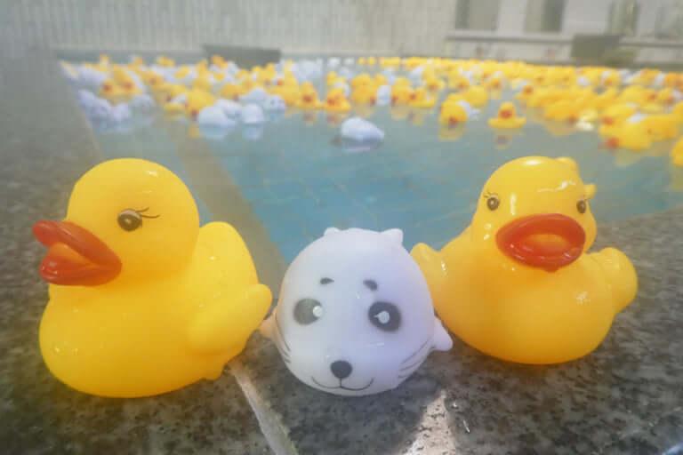 日の本湯であひる風呂
